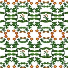 pattern calendula