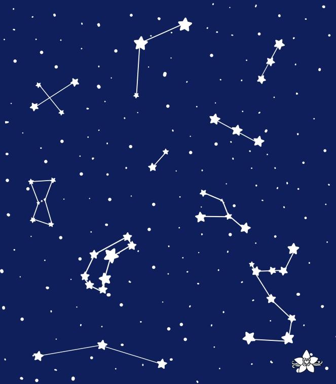 bolso constelacion_