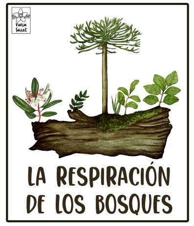 Logo bosque